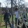Baumpflegeseminar