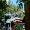 Abseilen von der Baumplattform